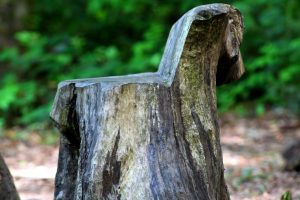 Self-regulation for healing trauma