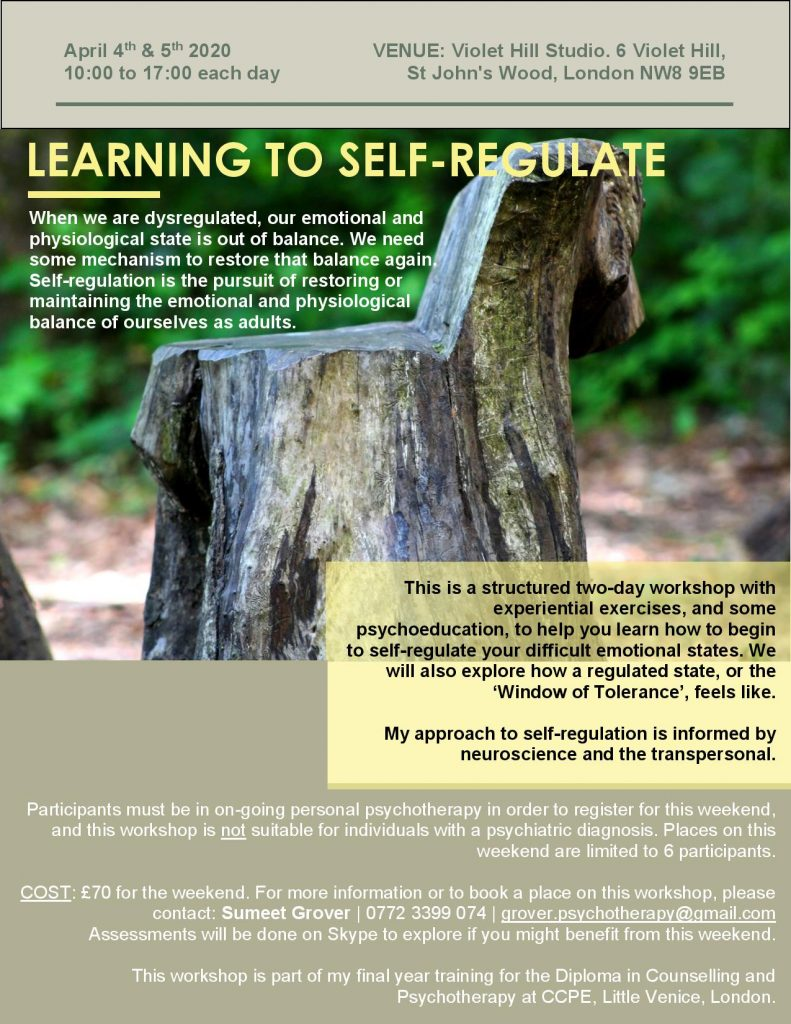 Self Regulation Psychotherapy Workshop, April 4th 2020, Violet Hill Studios, NW8 9EB